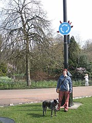 Roundabout in Kelvingrove park